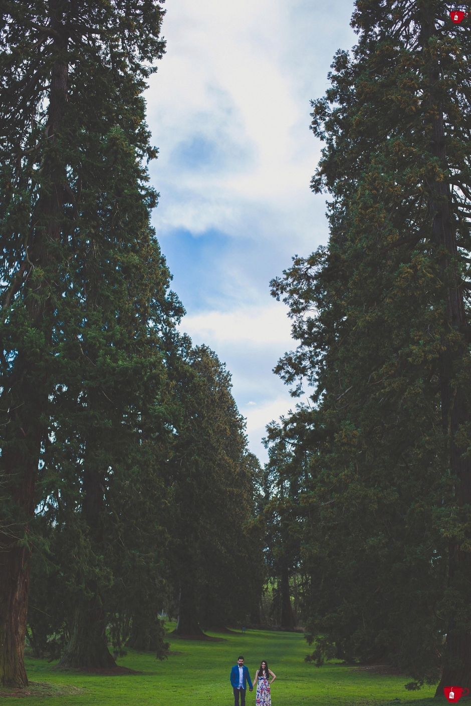 Couple stood in between tall trees in Leamington